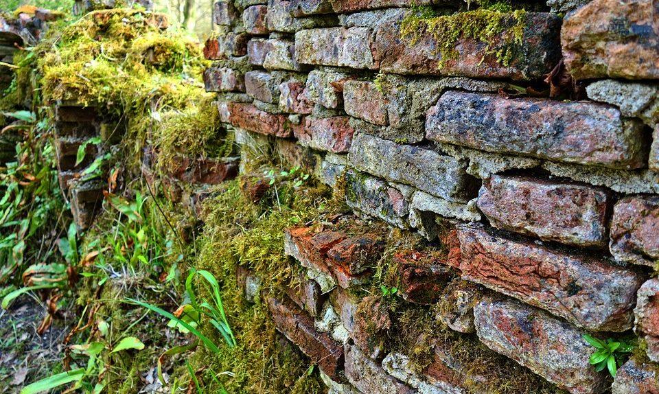 Când zidurile plâng....istoria nu iartă